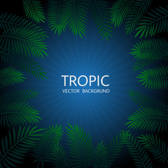 Design with exotic tropical palm leaves and lettering. Vector tropical background.