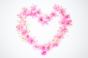 Heart-shaped floral background: vivid pink apple blossom. Copy space.