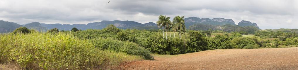 Valle de Vinales a karstic depression, Cuba