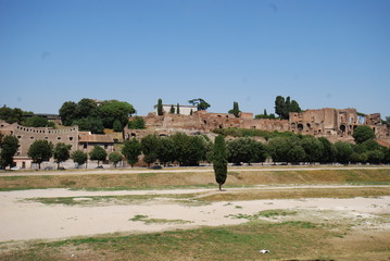 Circus Maximus; sky; tree; village; historic site