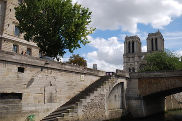 Notre Dame de Paris; waterway; building; sky; tree