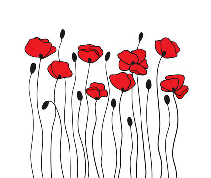 Poppy flowers and buds. Floral pattern in black and red.