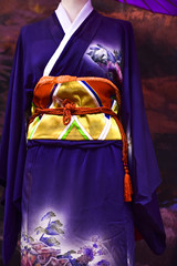 Kimono. Traditional Japanese dress for women with decorations