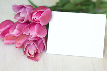 background greeting card with pink tulips