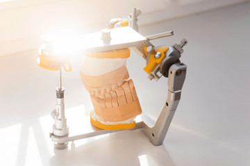 Dental model and dental equipment on white background, concept medical image of dental healtcare, dental hygiene with sunlight isolated