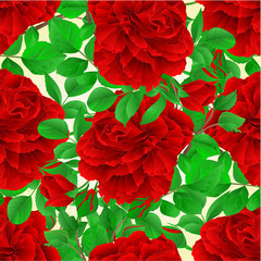 Seamless texture red rose with buds and leaves vintage nature background vector illustration editable hand draw