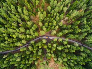 Road with truck in forest from above