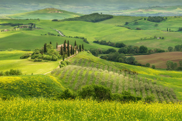 Fotomurales - Tuscany spring landscape, Val d'Orcia, Italy