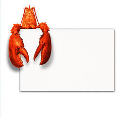 Lobster with poster