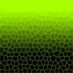 Neon Snake Skin