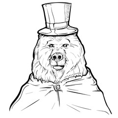 Hand drawn illustration bear in top hat,