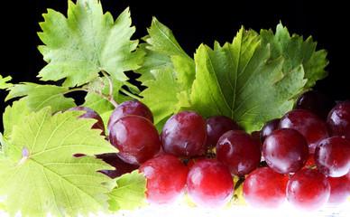 виноград чёрный крупный лежит на столе