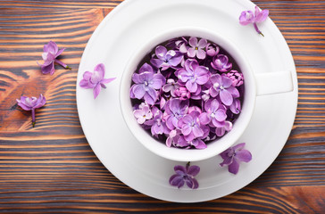 Purple lilac flowers in cup