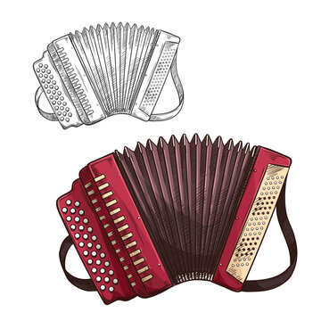 Vector sketch accordion musical insturment icon
