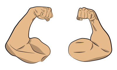 inflated muscle hands vector drawing illustration