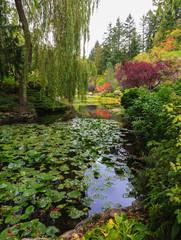 Complex flower gardens
