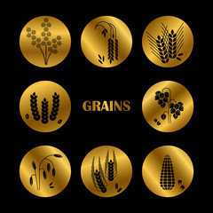 Black grains silhouette. Vector cereals icons collection