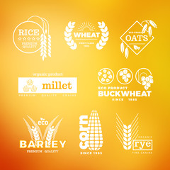Organic wheat grain farming agriculture vector logo set