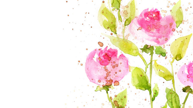 watercolor flowers on white bakground