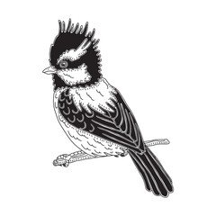 Hand drawn graphic sitting bird. Vector isolated illustration on  a white background.