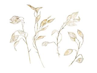 branches lunaria