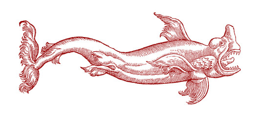 Shark with wide open mouth in profile view. Illustration after a historical or vintage woodcut from the 16th century