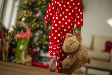 Young girl carrying her teddy bear towards the Christmas tree on Christmas morning.