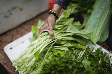 Freshly cut green leafy vegetables being picked up by a hand.