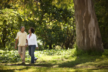 Happy mature couple walking hand in hand at the park.