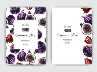 Fruit banner for eco store with Fig and strawberry.