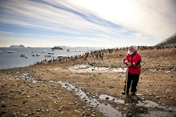 Man admiring the flock of penguins surrounding him on a beach.
