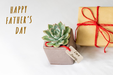 Happy father's day concept. Gift box and green cactus, paper tag with Love Daddy text