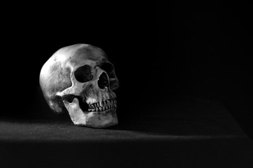 Single skull put on the black table and black wall in morgue room dim light adjustment color black and white for background