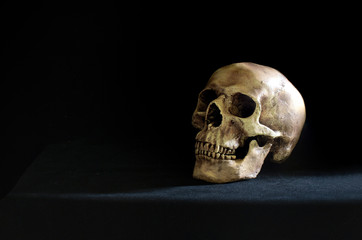 Single skull put on the black table and black wall in morgue room dim light