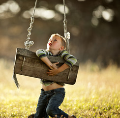 Little boy playing on the tree swing.