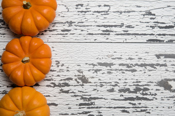 A row of mini orange pumpkins on a white wooden plank background with copy space