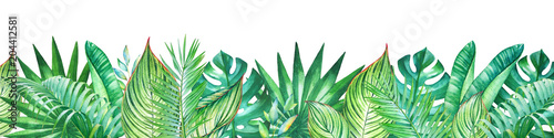 Wall mural Background with watercolor tropical plants. Useful for design of banners, cards, greetings, invitations and many others.
