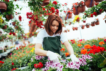Redhead young woman working in greenhouse and enjoying in beautiful flowers. Female worker working at garden center.