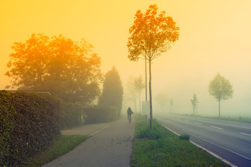 Summer Landscape with Field and Country Road Leading in the Fog.  Sunset Background