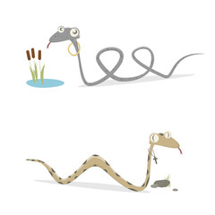 funny german grass snake and adder comparison