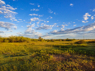 A view of the pampa biome with sunrise colors - Uruguaiana, Brazil