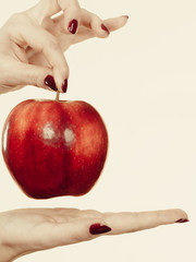 Woman hand holding red apple, healthy food concept