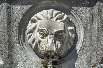 Street faucet with a lion head and water on sunny day, close up