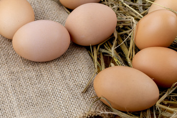 Brown eggs on sackcloth and rice straw