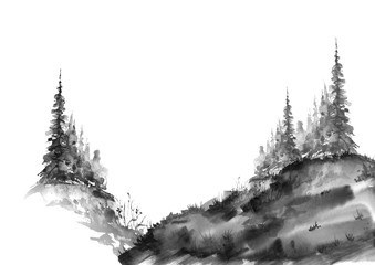 Watercolor group of trees - fir, pine, cedar, fir-tree. black and white forest, countryside landscape. Slope, hill, forest landscape. Drawing on white isolated background.