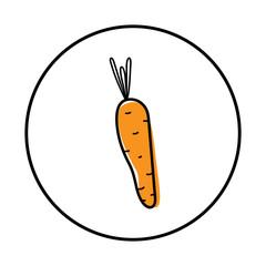 Carrot icon vector illustration