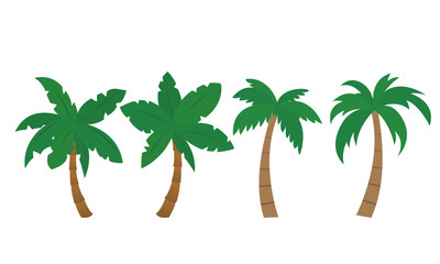 Set of vector palm illustrations, isolated - Flat design