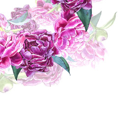 Vintage peony template. Watercolor illustration. Design elements for cards, invitations and textile. Isolated on white.