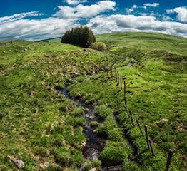 petit ruisseau dans un paysage verdoyant du Cantal