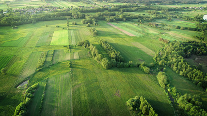Foto op Canvas Luchtfoto aerial shot from the drone - spring fields